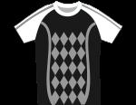 tshirt-f22